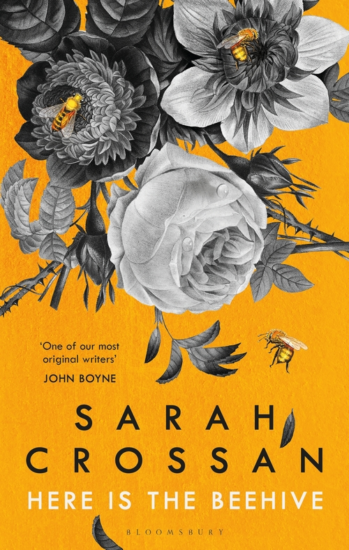 Here is the Beehive by Sarah Crossan