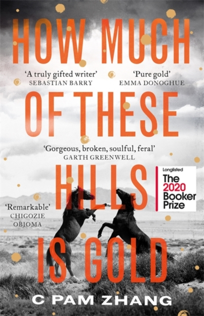 How Much of These Hills is Gold by C Pam Zhang | 9780349011462