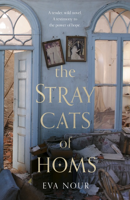 The Stray Cats of Homs by Eva Nour (tr. Agnes Broomé) | 9780857526755
