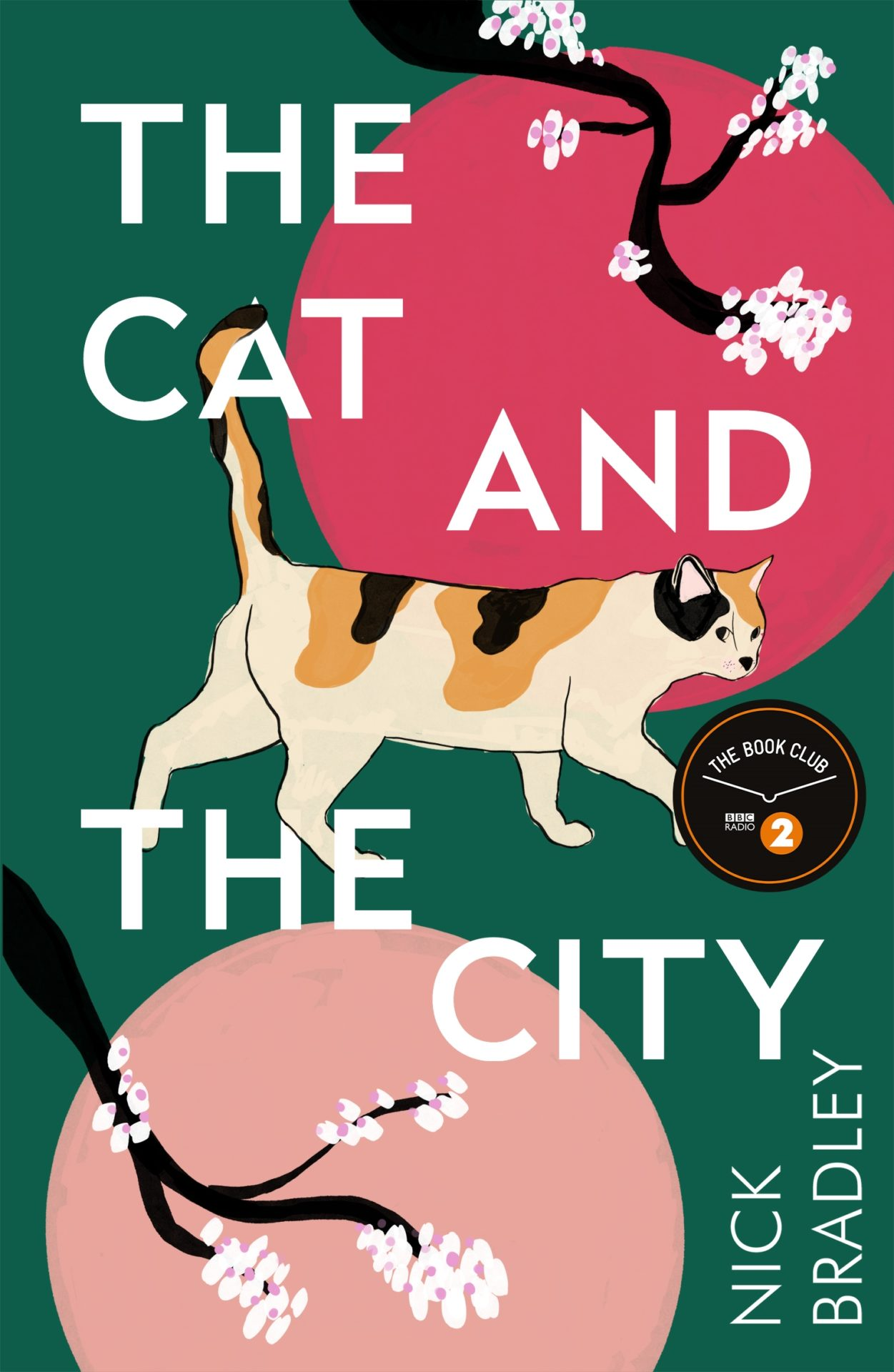 The Cat and The City by Nick Bradley