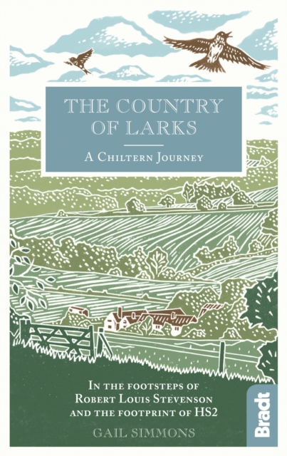 The Country of Larks by Gail Simmons