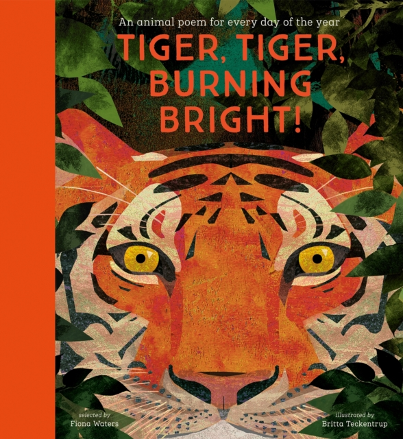 Tiger, Tiger, Burning Bright! – An Animal Poem for Every Day of the Year by Fiona Waters | 9781788005678