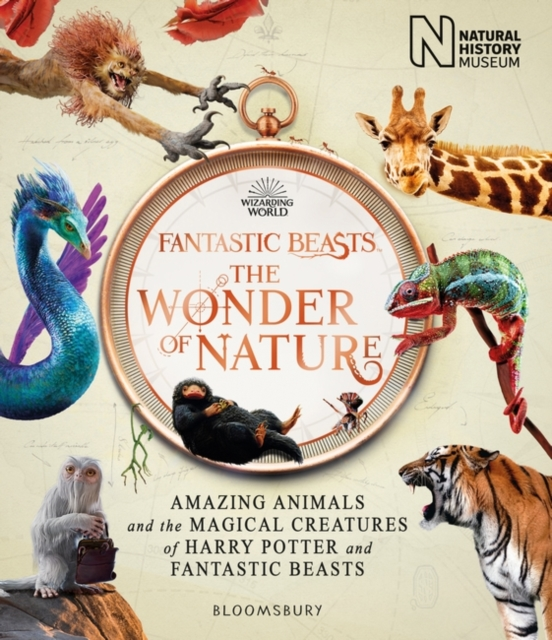 Fantastic Beasts: The Wonder of Nature by Natural History Museum | 9781526624031