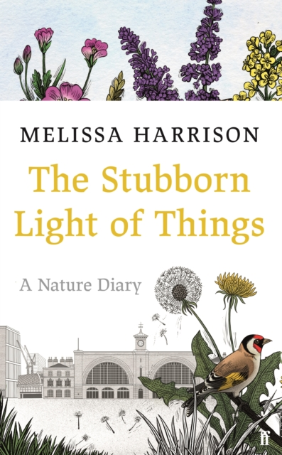The Stubborn Light of Things by Melissa Harrison | 9780571363506