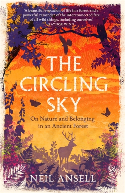 The Circling Sky by Neil Ansell | 9781472272362