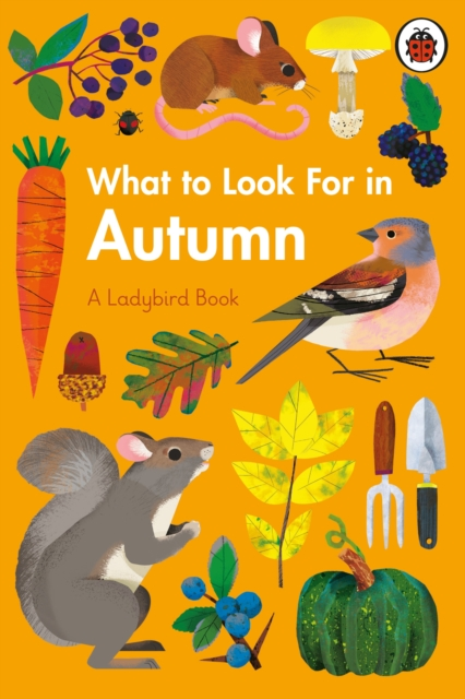 What to Look for in Autumn by Elizabeth Jenner, Natasha Durley