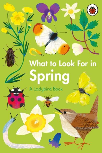 What to Look for in Spring by Elizabeth Jenner, Natasha Durley
