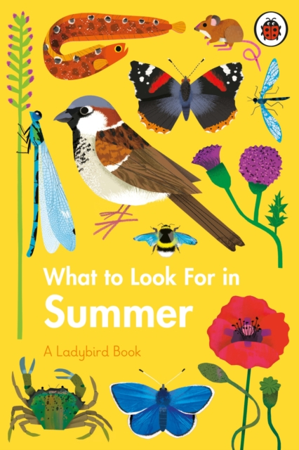 What to Look for in Summer by Elizabeth Jenner, Natasha Durley | 9780241416204