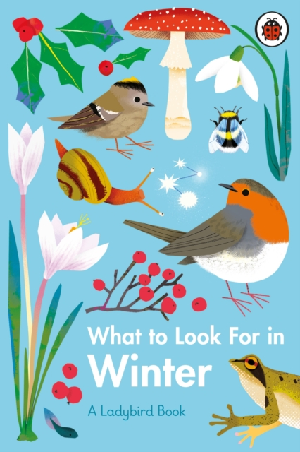 What to Look for in Winter by Elizabeth Jenner, Natasha Durley