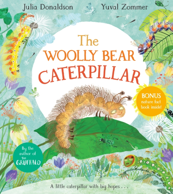 The Woolly Bear Caterpillar by Julia Donaldson, Yuval Zommer