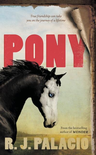 Pony by R. J. Palacio   9780141377056