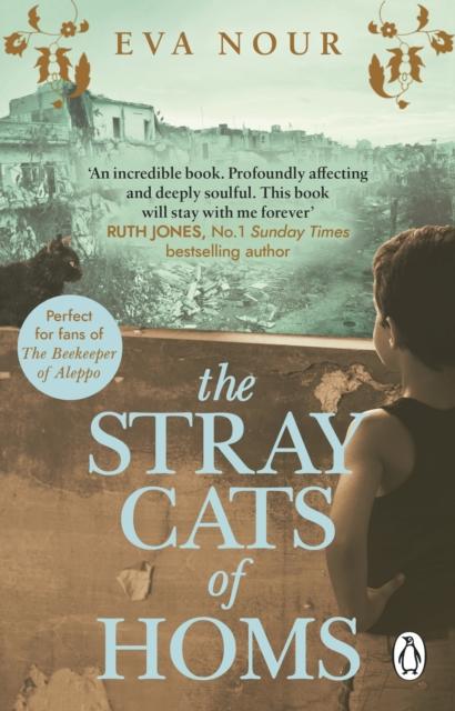 The Stray Cats of Homs by Eva Nour (tr. Agnes Broomé) | 9781784164928
